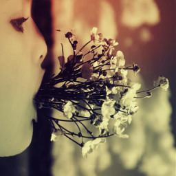 freetoedit remixes remixgalleries graphic flower