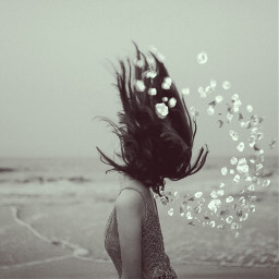 freetoedit girl beach petals blackandwhite