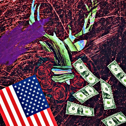 bornintheusa deerhunting dollars america americanlife