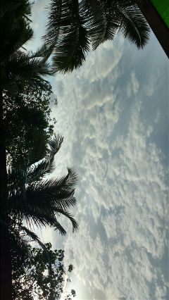 theview clouds