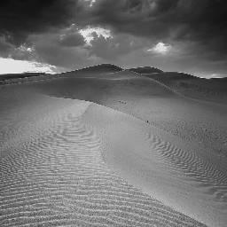 blackandwhite love photography travel desert freetoedit