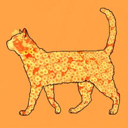 simple freetoedit kitty cat remixmefaves