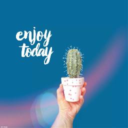 freetoedit kaktus enjoy edited