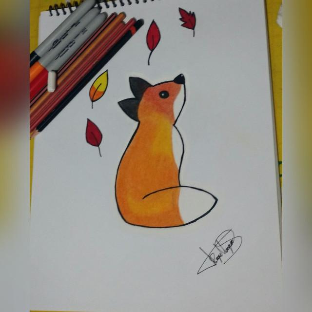 #Dibujo #Zorro