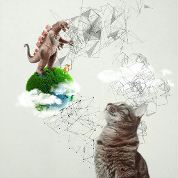 catimagination catsofpicsart freetoedit