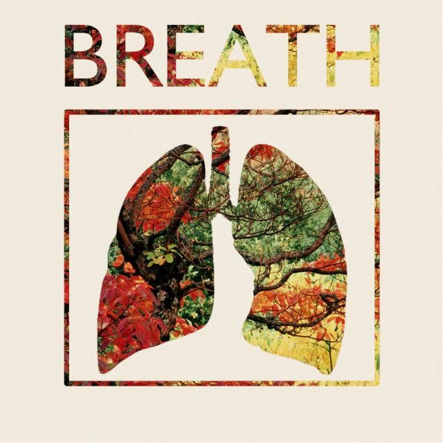 #collage #cutandpaste #digitalart #overexposure #imaginaryband #breath #vinylcover #lpcover #lung #nature